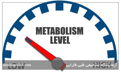افزایش سوخت و ساز بدن