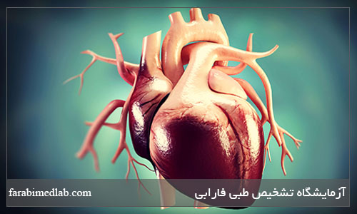 کلسترول مفید قلب