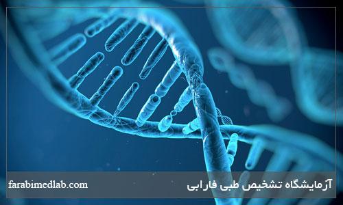 تست های مولکولی